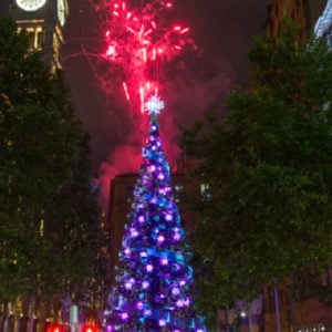 Natale in Australia: Martin Place Christmas tree