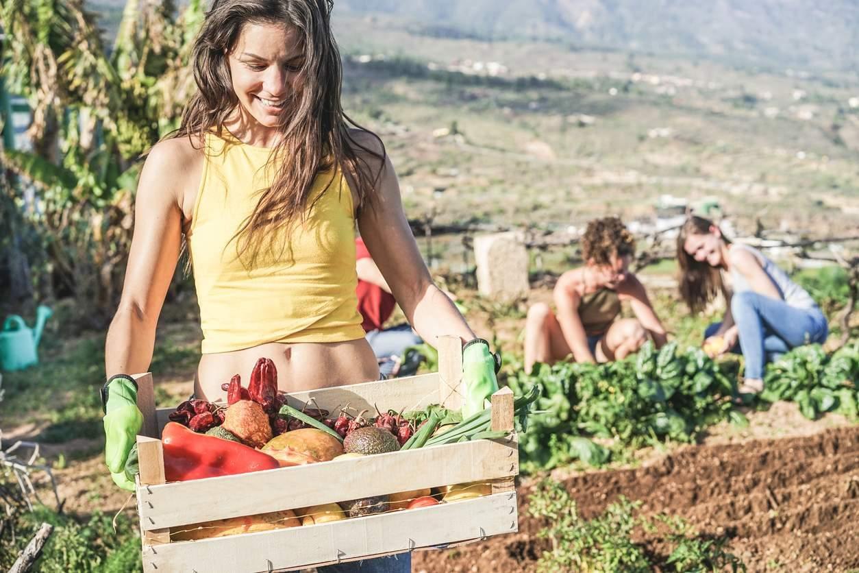 Trovare Lavoro In Costa Rica come trovare lavoro in farm in australia | info e consigli
